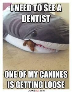 i-need-to-see-a-dentist-joke-235x300 Blog